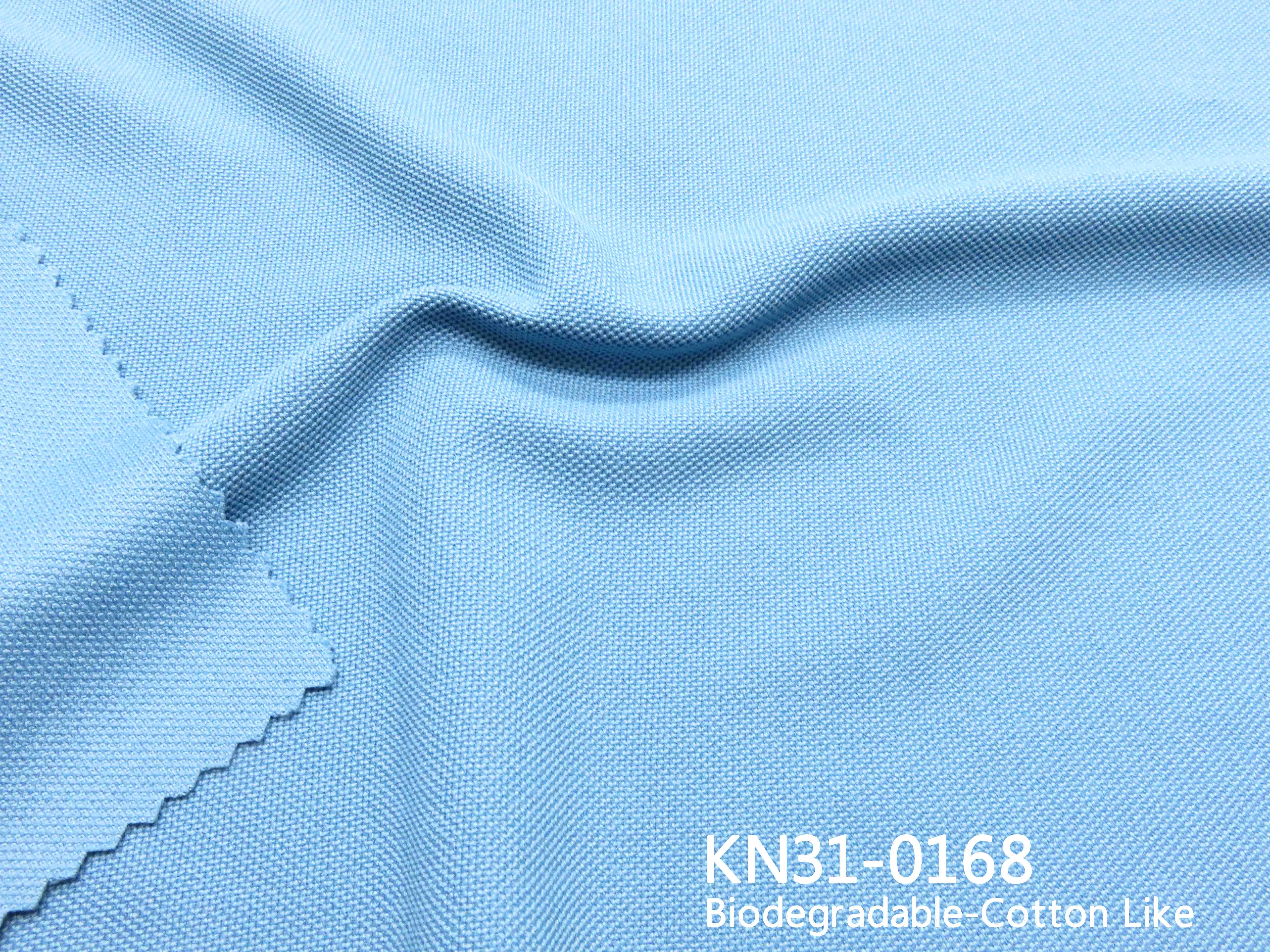 KN31-0168