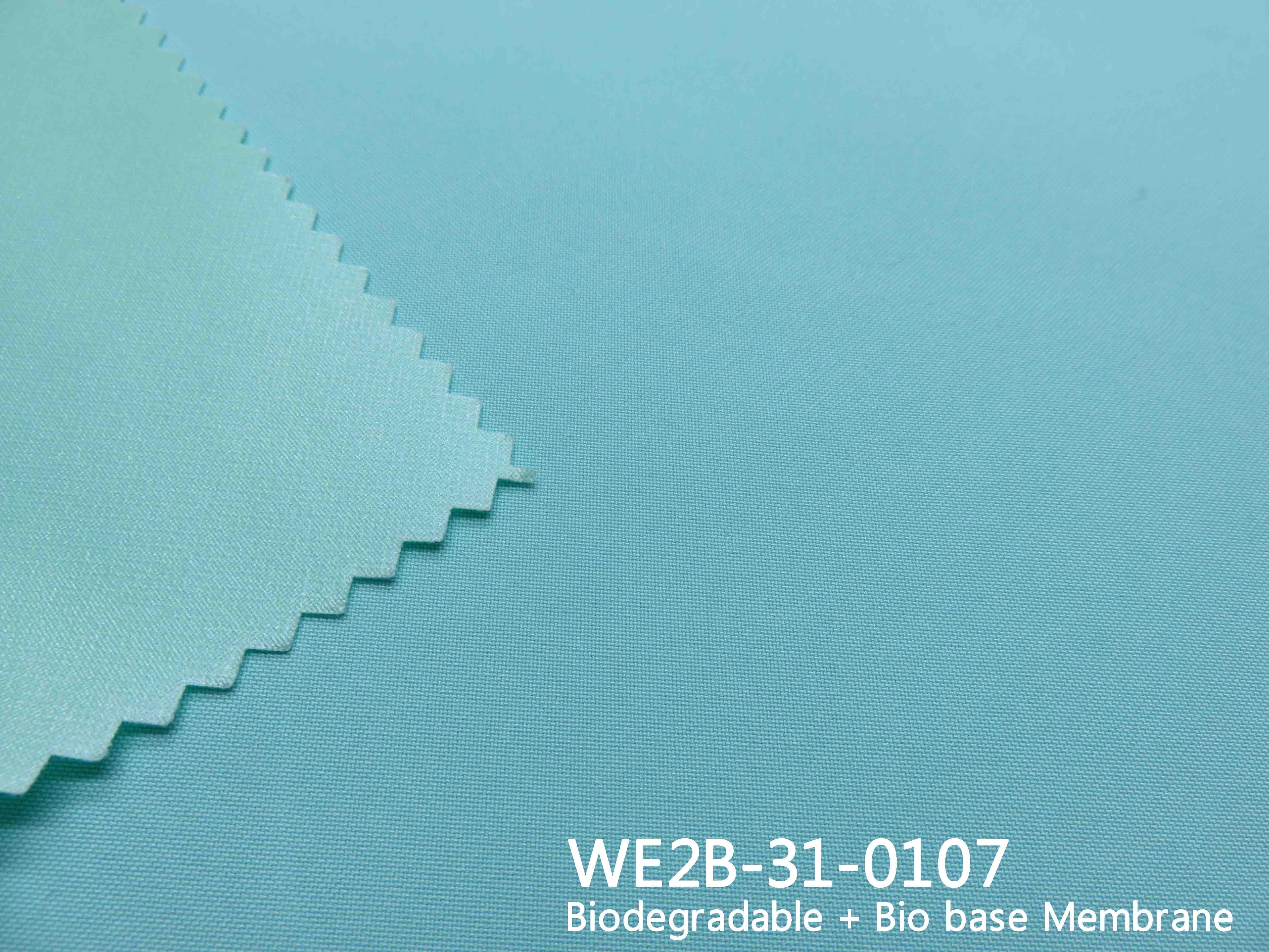 WE2B-31-0107