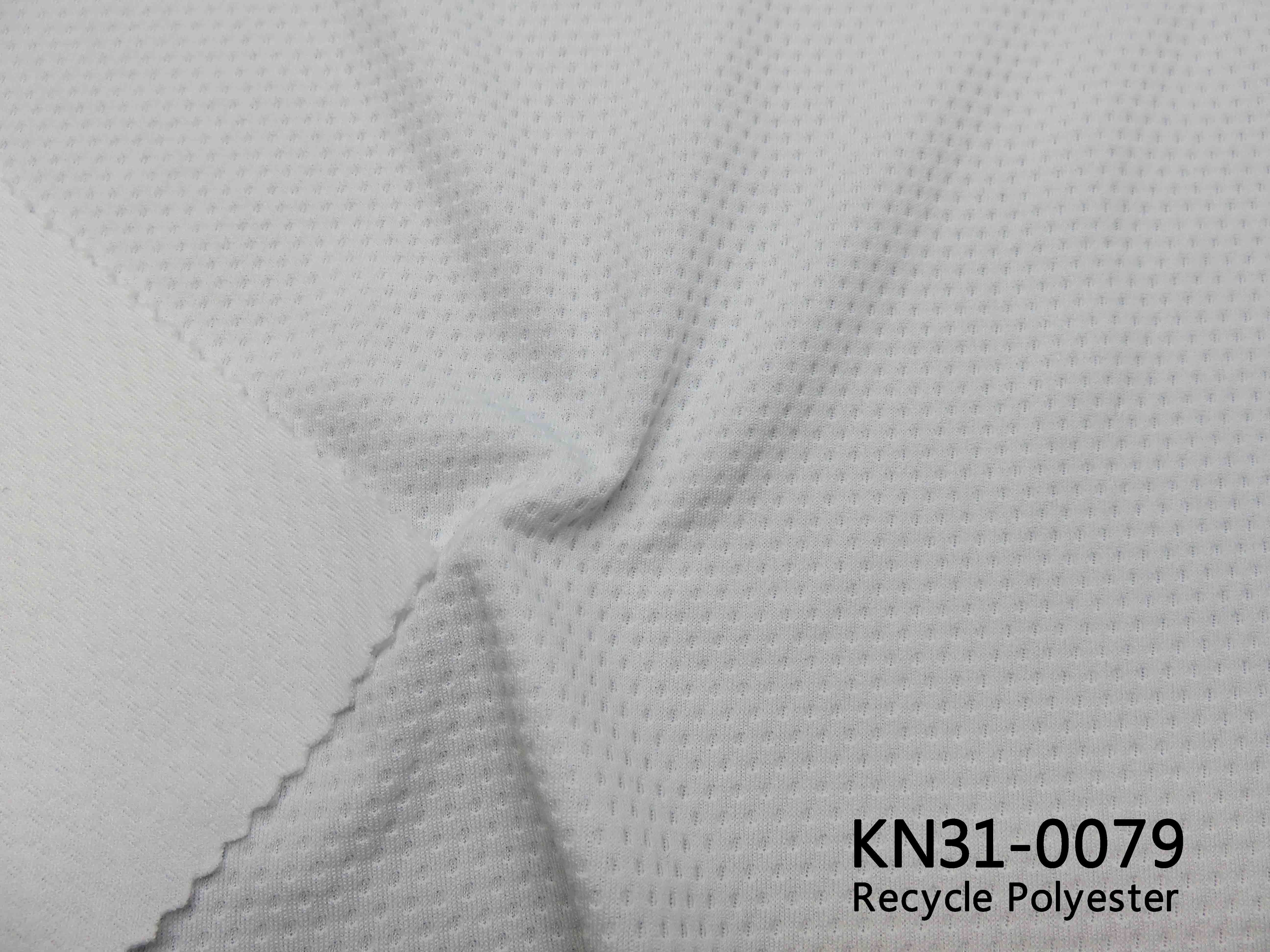 KN31-0079