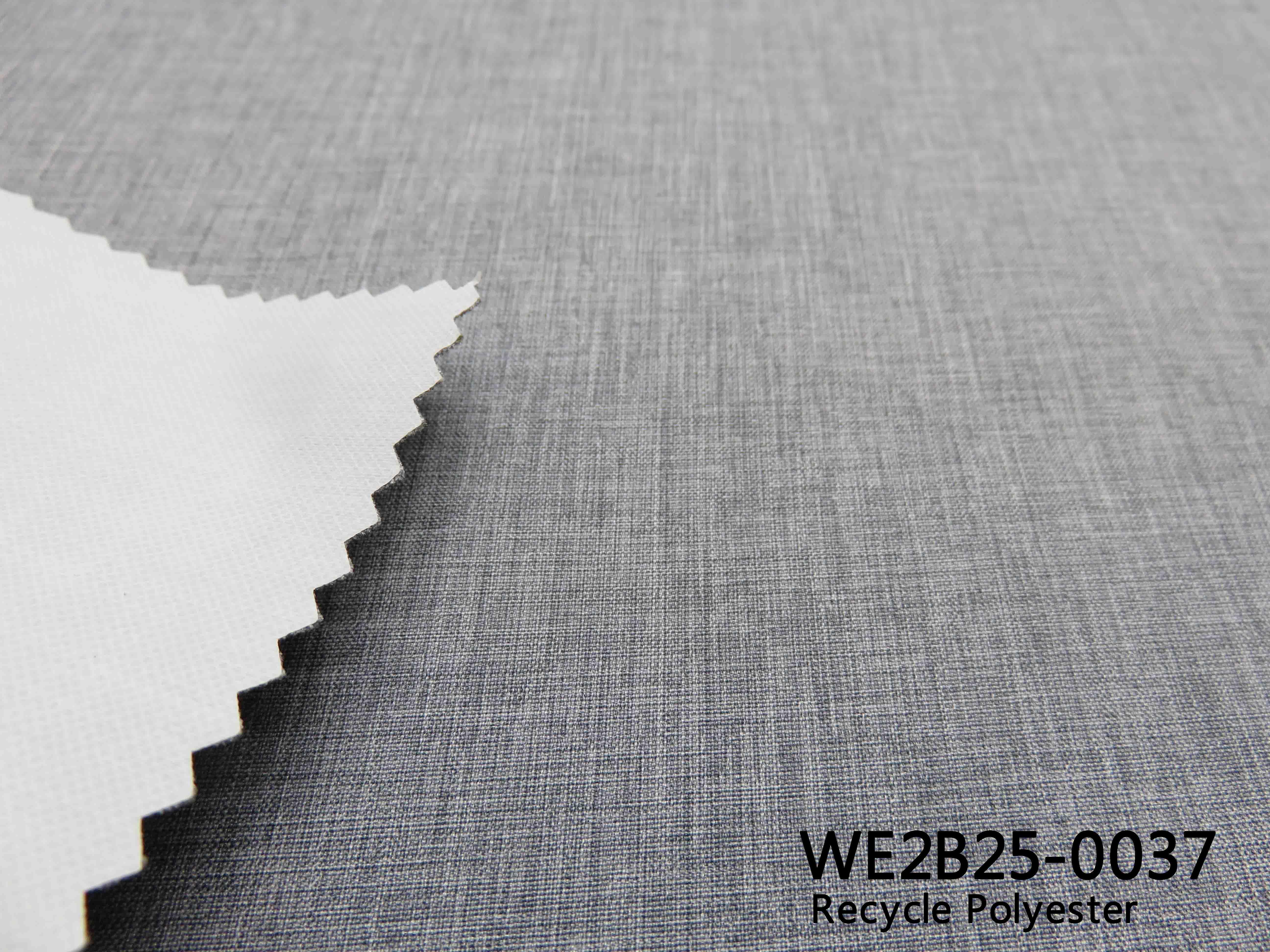 WE2B25-0037