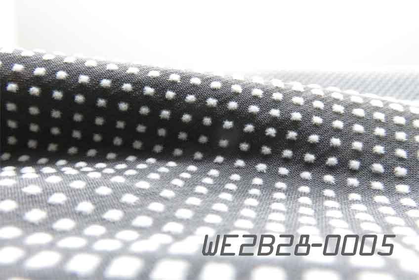 WE2B28-0005
